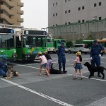 警察犬と触れ合う子供達