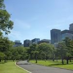 緑美しい皇居外苑前広場